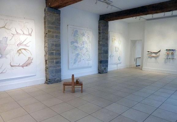 World of Wonder - Installation View, Sue Morris 2011