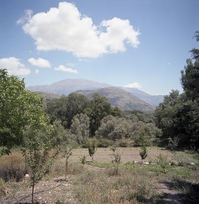 Gerakari, Crete, Greece, Hadas Tapouchi, Foto: Hadas Tapouchi