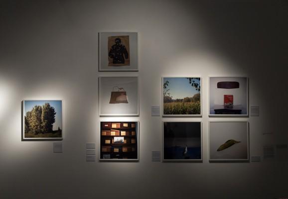 Second nature, Andrea Palašti, 2013, Ausstellungsansicht: Second nature